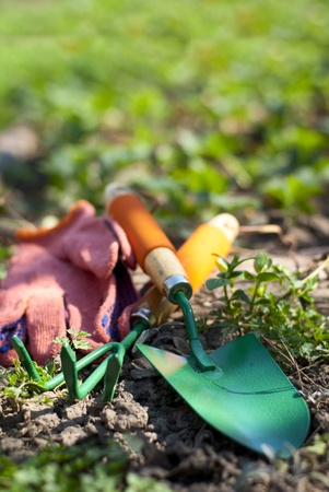 weeding: shovel, fork and gloves in the garden on the lawn