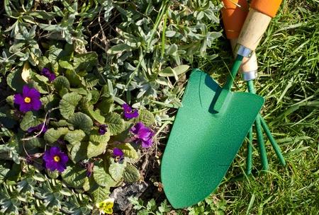 rural development: shovel, plug in the garden on the lawn