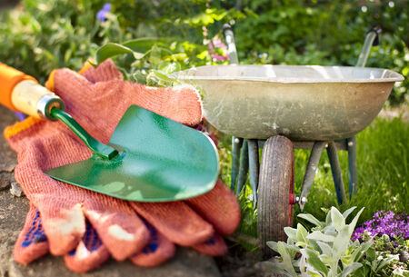 galvanised: Garden equipment standing ready in the garden to cultivate the flowers with a pair of gardening gloves and small green metal trowel in the foreground and galvanised wheelbarrow behind