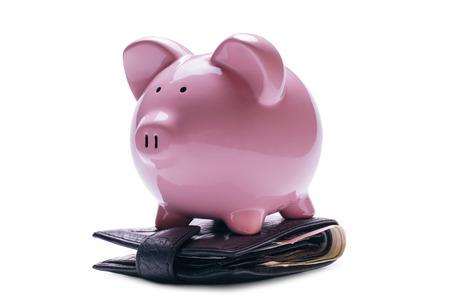 white piggy bank: Pink porcelain piggy bank on a wallet with banknotes or bills, concept of savings and daily expenses, close-up with shadow on white