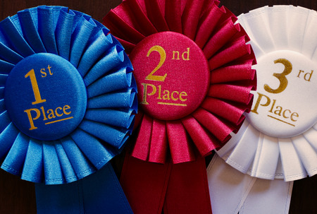Three winners rosettes for first, second and third place in pleated blue, red and white ribbon respectively with central text photo
