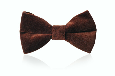 'evening wear': Mans brown velvet bow tie for evening wear or a gentlemans attire, standing upright on white