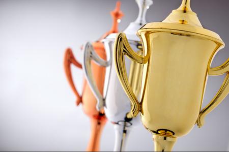 금,은 및 브론즈로 된 3 개의 트로피 컵은 경쟁에서 1, 2 위 및 3 위의 참가자에게 수여됩니다.