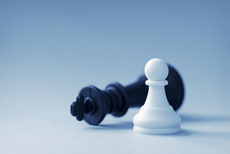 White chess pawn won black king on a light blue background