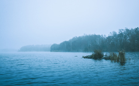 forested: Winter scene of a cold bleak lake or sea with a forested shoreline blanketed in mist for weather or seasons themed concepts