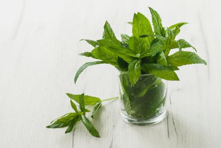 Bunch of green mint in a glass on a table Stock Photo