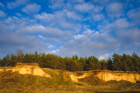 Pine forest on a precipice of sand against a blue sky with clouds Stock Photo