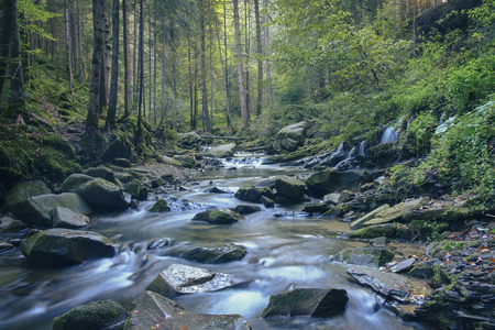 Fast river with stony shores in the forest