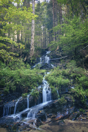 Waterfall in the forest with clear water