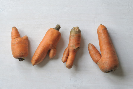 Imperfect carrots with ugly shapes on white background
