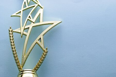 Gold star trophy for a competition or championship winner over a grey background with copy space placed to the side
