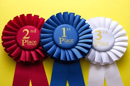 Three rosettes for the winner and second and third placed runners up in a competition or race laid side by side on a yellow background