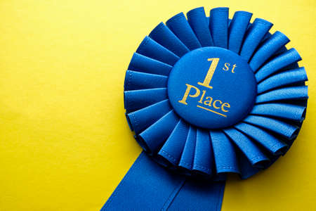 First place winners rosette with blue ribbon and gold text on  yellow