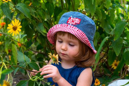 cognicion: Una ni�a mira una flor amarilla. Foto de archivo