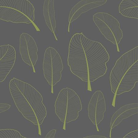 Plátano esqueleto deja patrón textil sin costuras. Hojas de color verde claro transparentes aisladas sobre fondo gris. Ilustración vectorial.