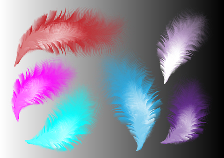 Set of isolated colour fluffy twirled feathers isolated on gradient background in realistic style vector illustration. Feather brushes in it.