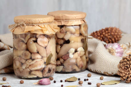 Marinated mushrooms in glass jar. Canned suillus, front view. Homemade pickled mushroom, delicious vegetarian food. Marinate fungus snack preserve. Gourmet meal appetizer with spice