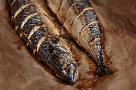 Grilled mackerel fish, bbq cooked seafood barbecue. Fish meat grill cooking whole. Baked scomber, grilling dish, japan, germany or spanish gastronomy, outdoor smoke meal. Barbeque mackerel