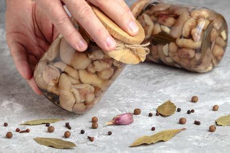 Marinated mushroom jar. Glass canned organic suillus, natural forest mushrooms, woods harvest. Tinned pickled edible fungi, vegetarian food. Homemade fungus appetizer, gourmet preserve Banque d'images