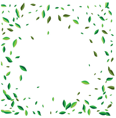 Green flying or falling off leaves. Vector abstract foliage background. Vector illustration. Illustration