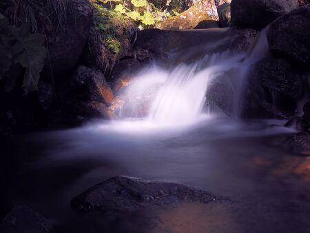 cascada en el bosque de los cárpatos Foto de archivo