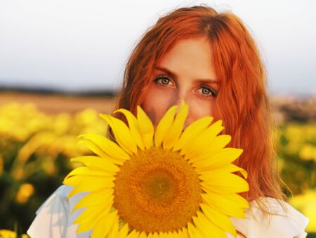 Girl redhead portrait at the yellow spikelets and sunflowers Reklamní fotografie