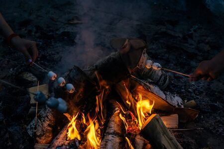 in the hands on sticks over a fire in the evening, marshmallows are fried