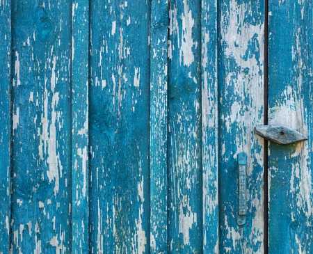 worn: Rubbed blue paint on an old wooden door of boards and a wooden texture