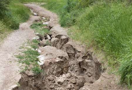 Erosion, destruction of soil on a mountain path after heavy rain among green vegetation.