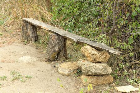 A very old wooden bench, green bushes, trees, dry grass, in the Ukrainian rock garden.