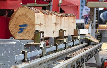 Woodworking, lumber, a large pine log is fixed on the flyover of a modern automatic sawmill. Stok Fotoğraf