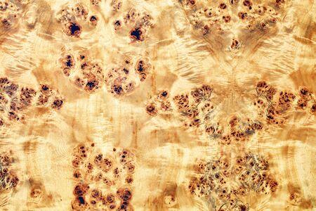 Beautiful veneered wooden veneer background with leopard prints.