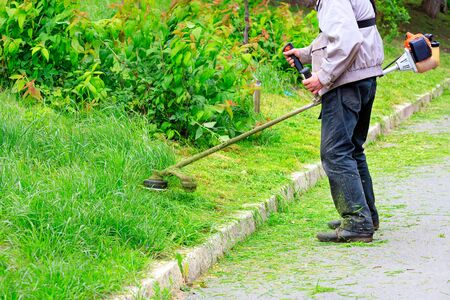 Worker with petrol grass trimmer cares for an urban green lawn near the sidewalk. Copy space. Banco de Imagens