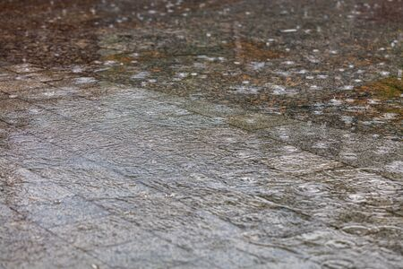 Heavy rain, large drops form concentric circles on the surface of the water and flood the granite sidewalk slabs on the city street. Selective focus, soft gradient of light and shadow.