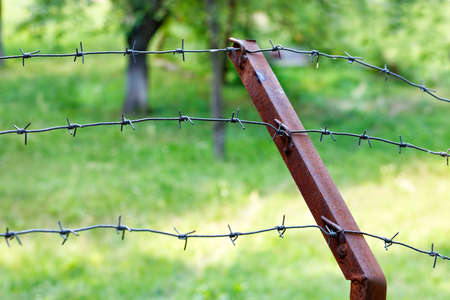 The barbed wire is stretched on a rusty iron support against the background of a green garden in blur. Territory protection concept, copy space.