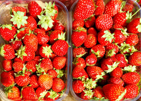 Red ripe strawberries are collected in plastic containers and sold in street markets, top view.