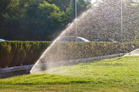 Beautiful spray of water in the backlight of the evening sun created by a powerful sprinkler system for watering the green lawn, space for text.