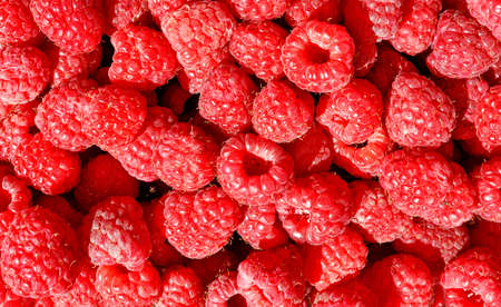 Red and ripe raspberries close-up in bulk in sunlight, for sale, background and texture, close-up, top view.