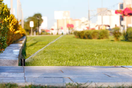 Automatic irrigation system irrigated the lawn on a blurred background of the cityscape on a bright sunny day, copy space. 免版税图像
