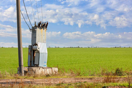 An old transformer station stands in the middle of a green field, near a concrete pillar, against a blue cloudy sky. 免版税图像