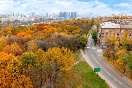 Bright orange foliage of the city park in the autumn cityscape, in the background the city in the daytime blue haze, bird's-eye view.