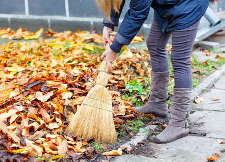 The hostess sweeps away fallen leaves from the path with a broom in the autumn garden, selective focus.