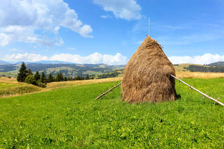 A haystack stands on a green mountain meadow against the backdrop of a beautiful summer mountainous landscape on a bright sunny day. Imagens