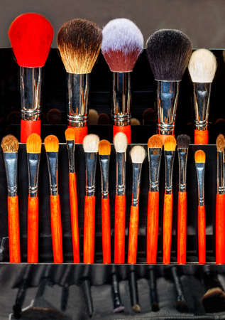 Makeup brushes in various shapes and sizes, a great choice for the female beauty industry. Vertical image, copy space. 免版税图像