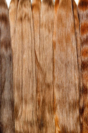 Milk chocolate color shiny natural human hair bundles for hair extensions and wigs.Vertical image, copy space.