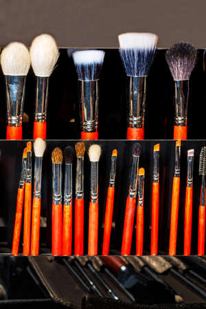 Natural bristle makeup brushes in assortment, large selection, different shapes and sizes, beauty industry. Vertical image, copy space.