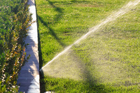 An automatic irrigation system sprinkles the lawn with a wide spray of water against the backdrop of a blurred green lawn on a bright sunny day. Copy space. 免版税图像