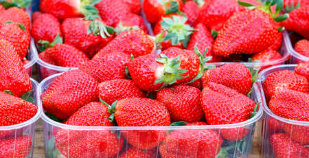 Appetizing and beautiful berries of ripe large red strawberries are sold on the market counter in small plastic baskets. Focus on the foreground, copy space.