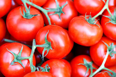 Red ripe tomatoes on green stalks. Selective focus, close-up. Stock Photo