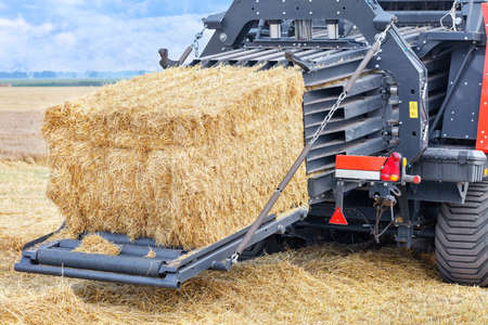Forming sheaves of straw into tight briquettes on a powerful agricultural tractor against the backdrop of a wheat field and harvesting. Close-up, copy space.